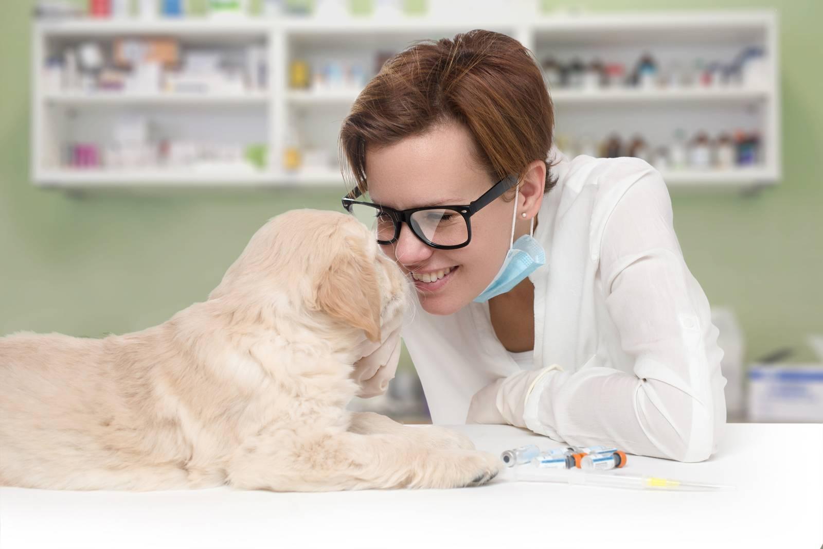 ветеринарные клиники в москве